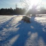 Mamma träning vinter Stora Skuggan
